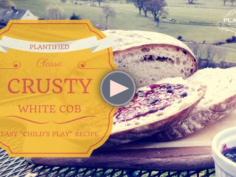 Classic Crusty White Cob (Vegan, Dairy free, Egg Free)
